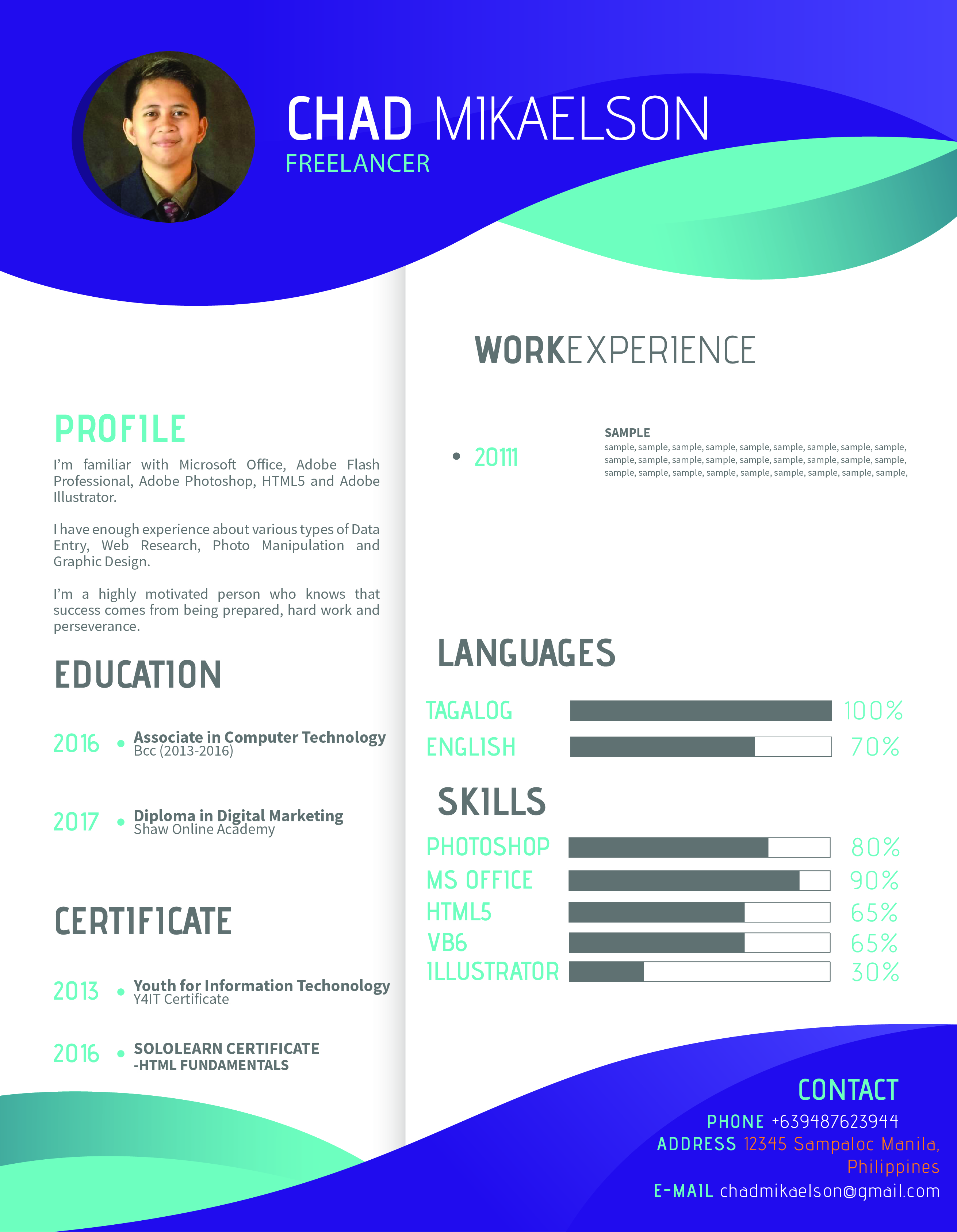 i can create an awesome cv resume infographic style